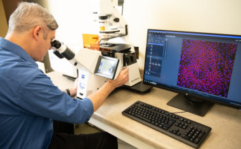 Dr. Tim Catchpole at the lab bench studying retina cells under a high power microscope