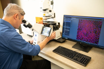 Discovering New Therapies for AMD